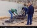 1993- dredging floyd lmab state park lake 3