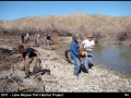 2011 - lake mojave fish habitat project 4